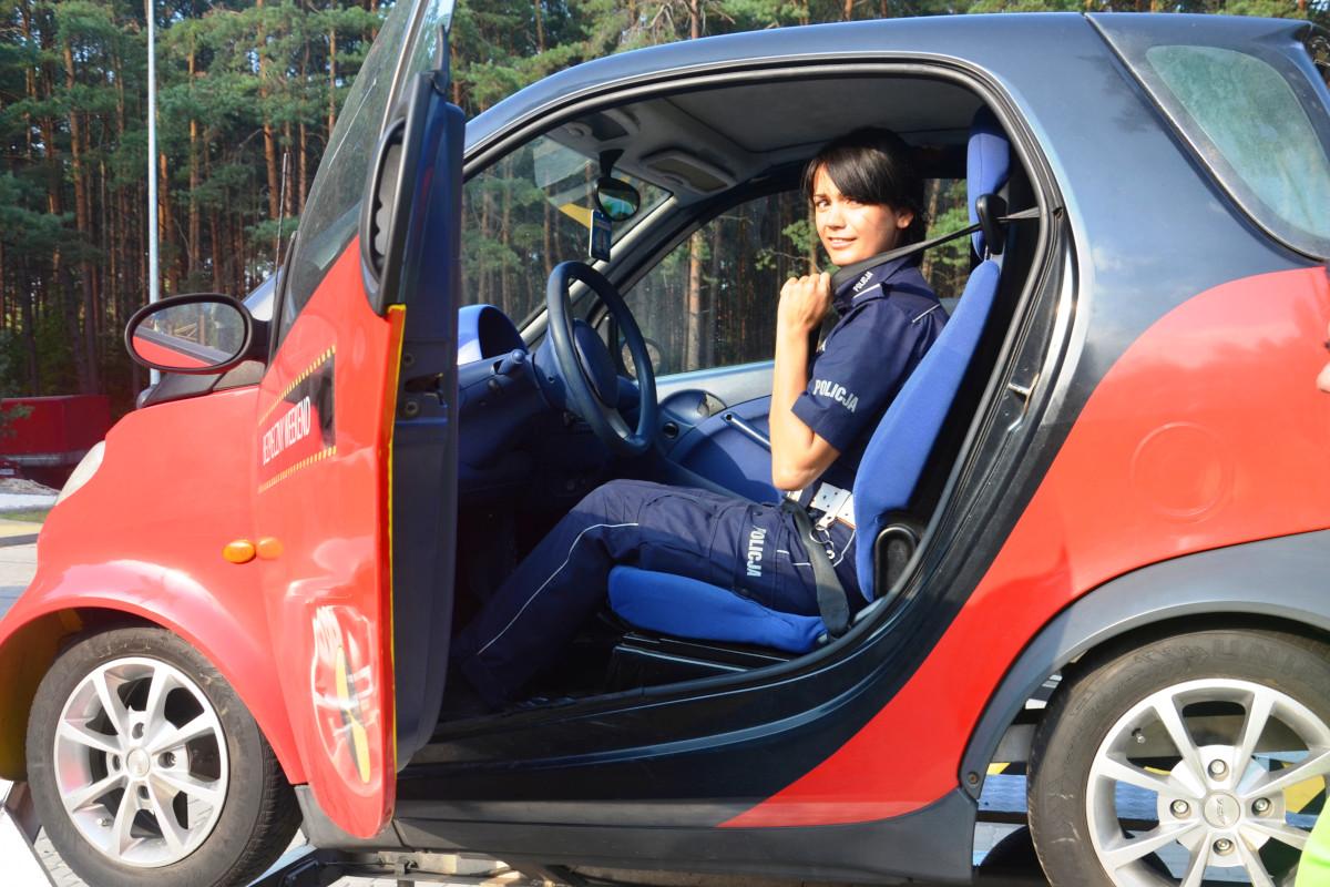 Symulator dachowania wynajem - 10 - szkolenie kierowców